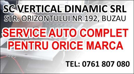 vertical-dinamic-cv